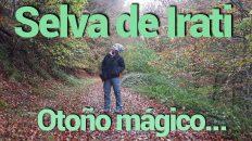 Visita a la Selva de Irati