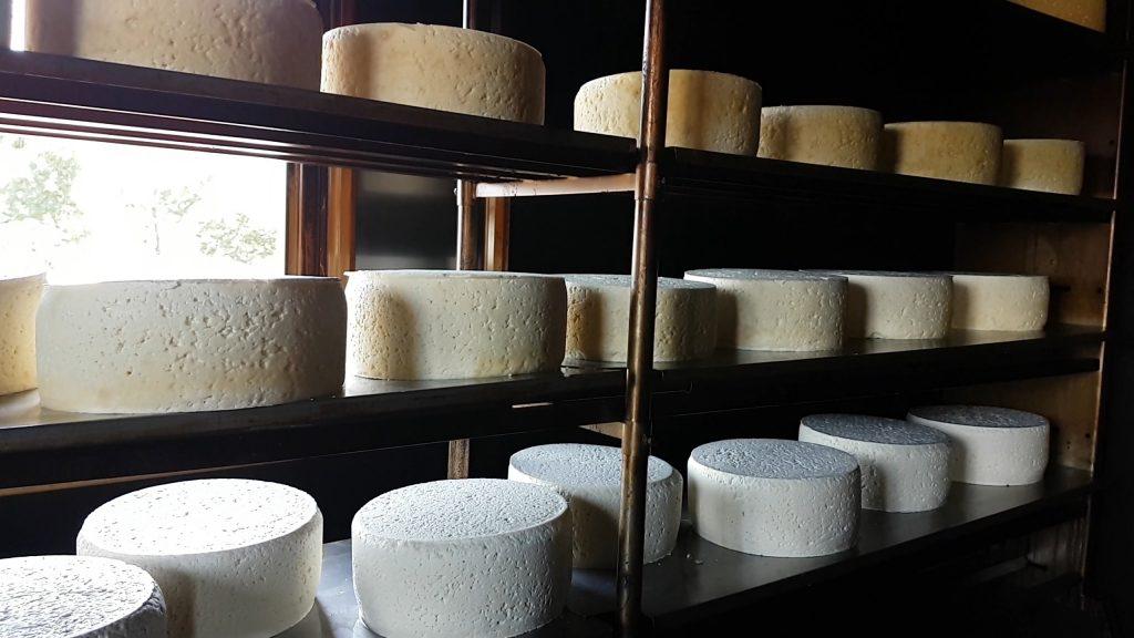 quesos Gamoneu